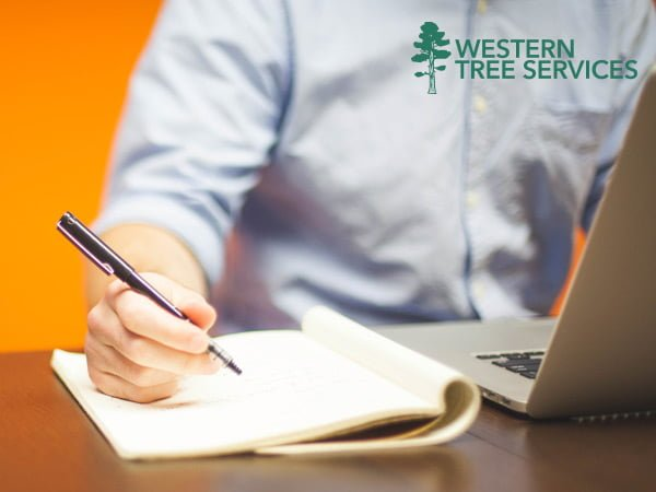 Residential tree services from Western Tree Services Corp | Contact Us
